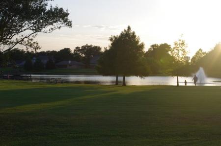 shy pond