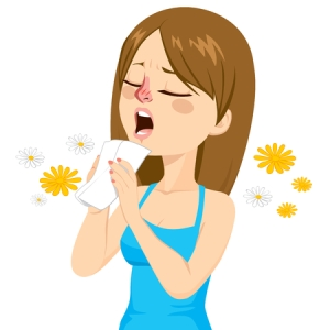 35894416 - young woman going to sneeze because of spring allergy making funny face
