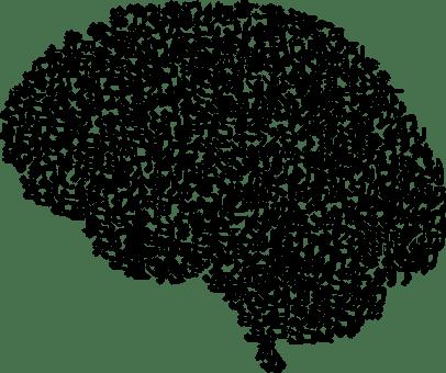 cranium-3244110_640